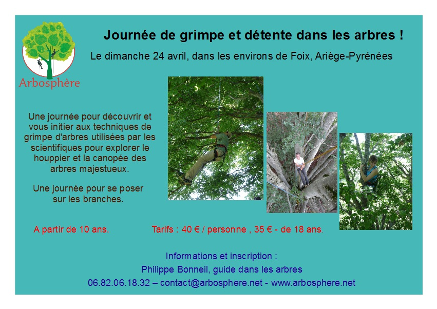 flyer stage journée