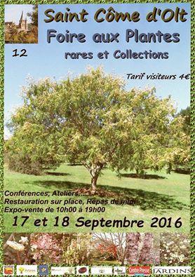 foire_plantes_StCome2016-1
