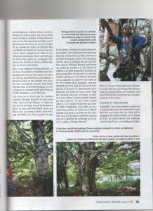 Grimpe d'arbres Ariège Pyrénées