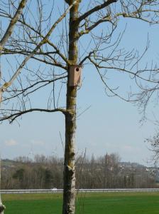 nichoir oiseaux VNF