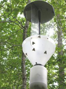 piège lumineux Lépidoptères