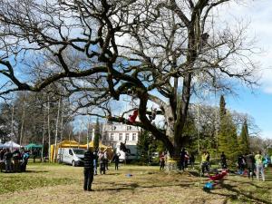 rencontres régionales d'arboriculture 2017 - Mazères
